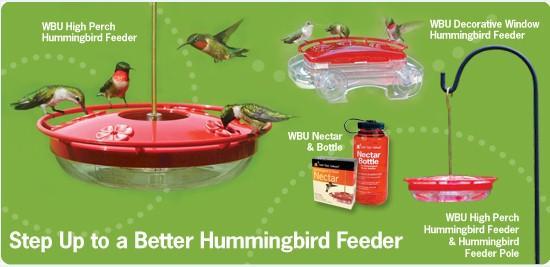 Marvelous How To Attract Hummingbirds Hummingbird Feeders